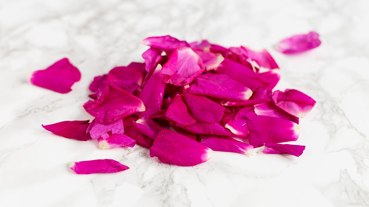 Rose petals in sugar preserve recipe