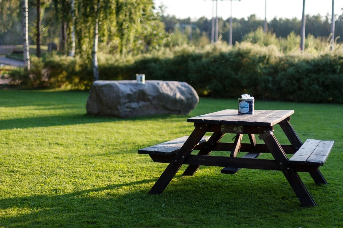 swedish summer bbq