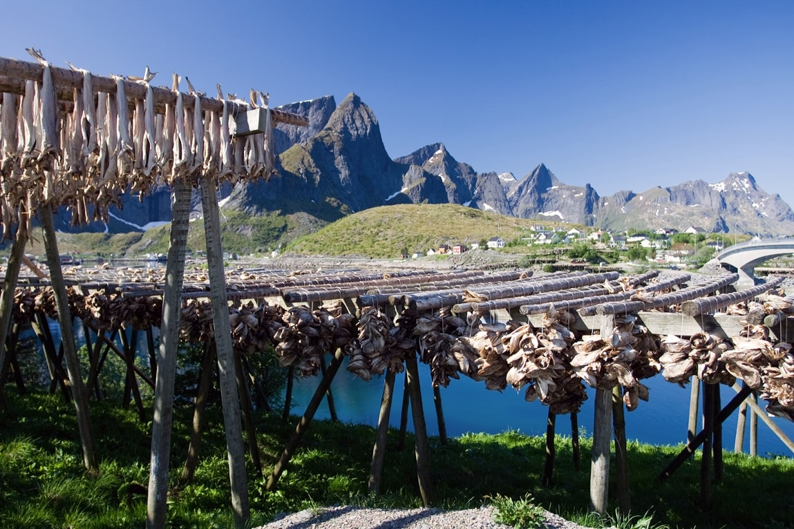 lofoten-northern-norway-stockfish-1