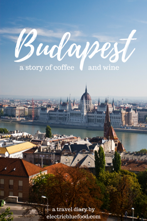 Budapest, Hungary, is a great city for excellent wine and coffee.