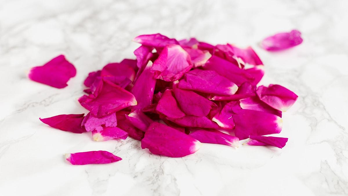 Rose petals in sugar preserve recipe