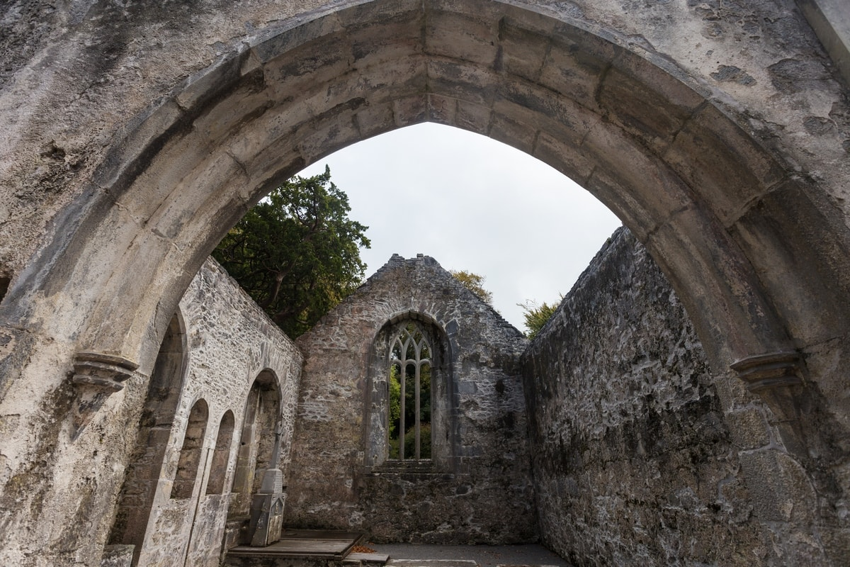 Ruins of Ireland: Muckross Abbey