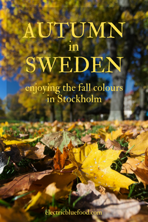 Autumn in Swede: enjoying the fall colours in Stockholm