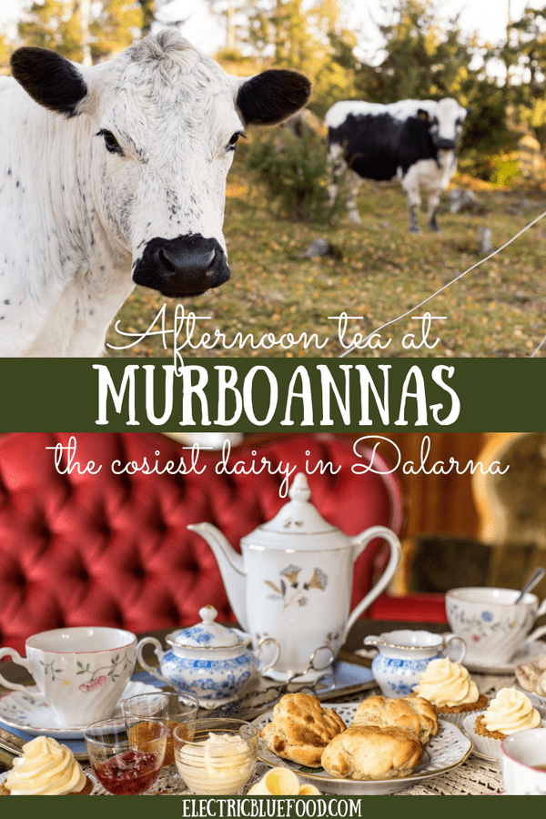 Afternoon tea at Murboannas