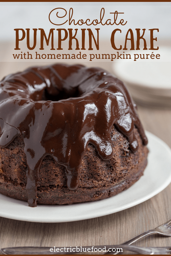 Chocolate pumpkin cake with chocolate ganache