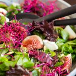 Fig and goat cheese salad, beet sprouts and raspberry vinaigrette