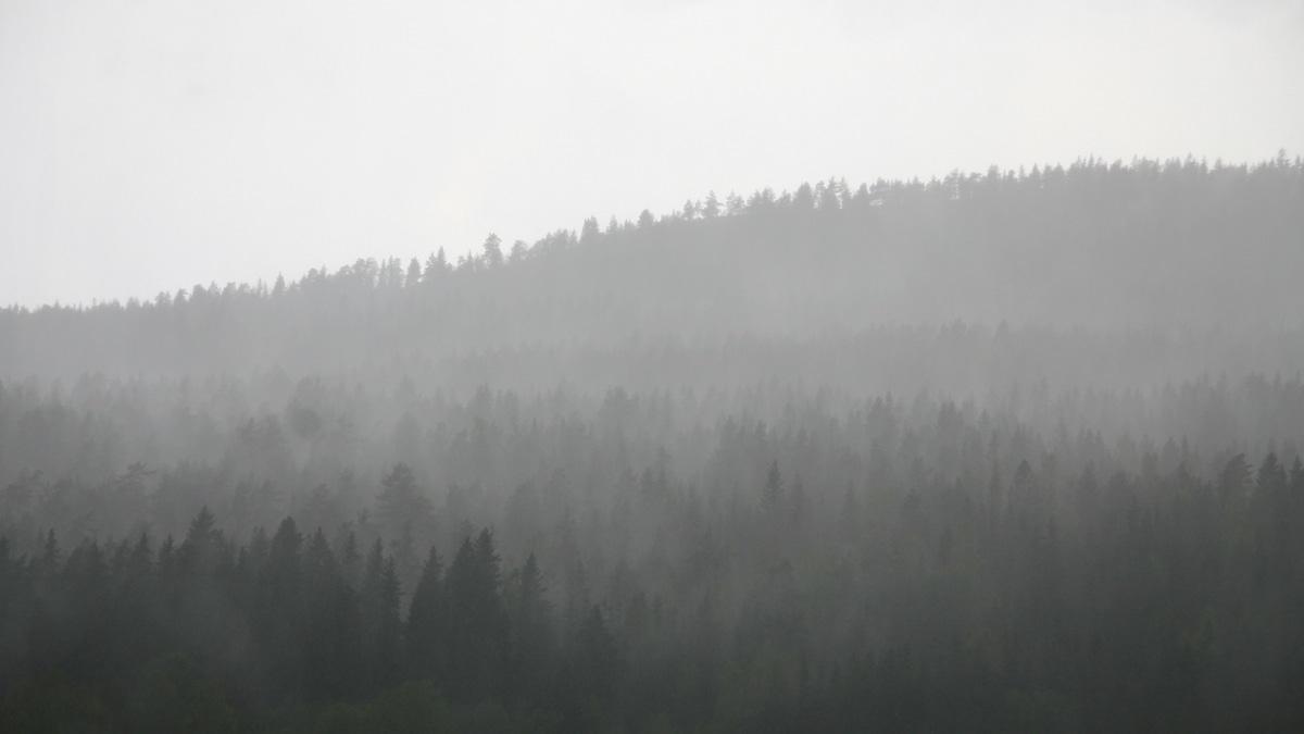 Oslo nordmarka from Kringsjå