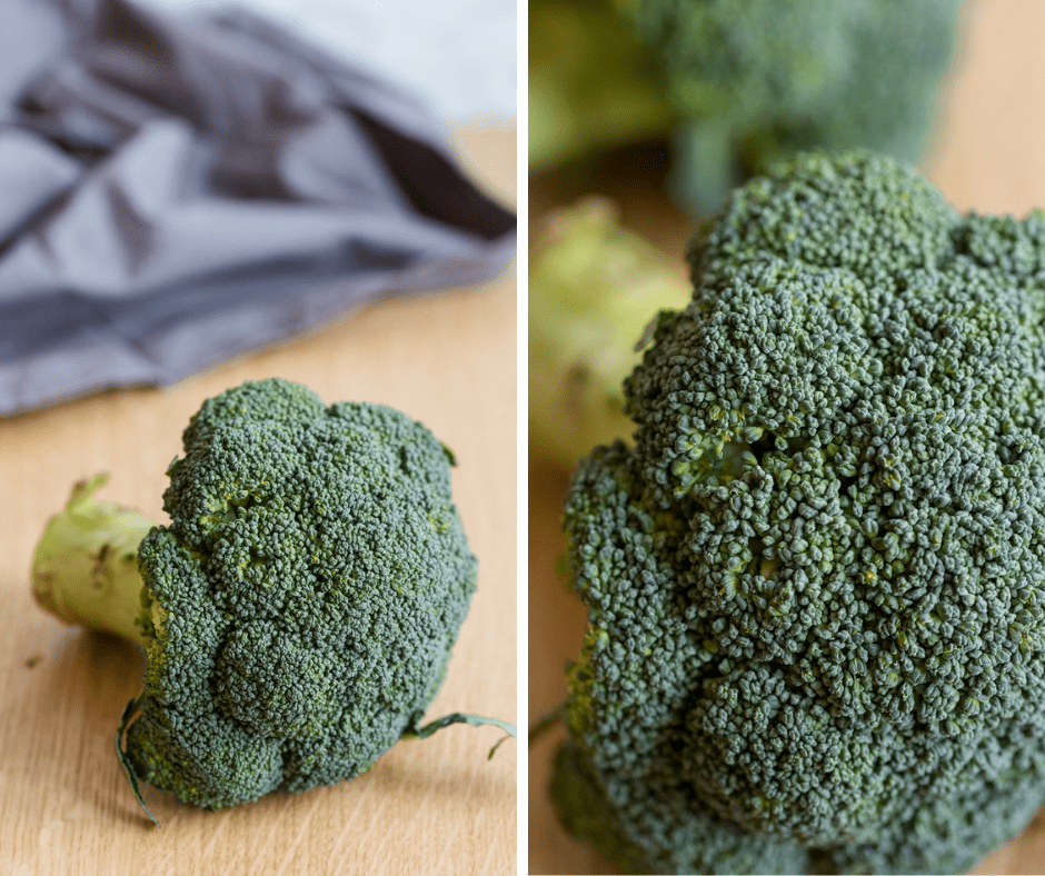 fresh broccoli closeup