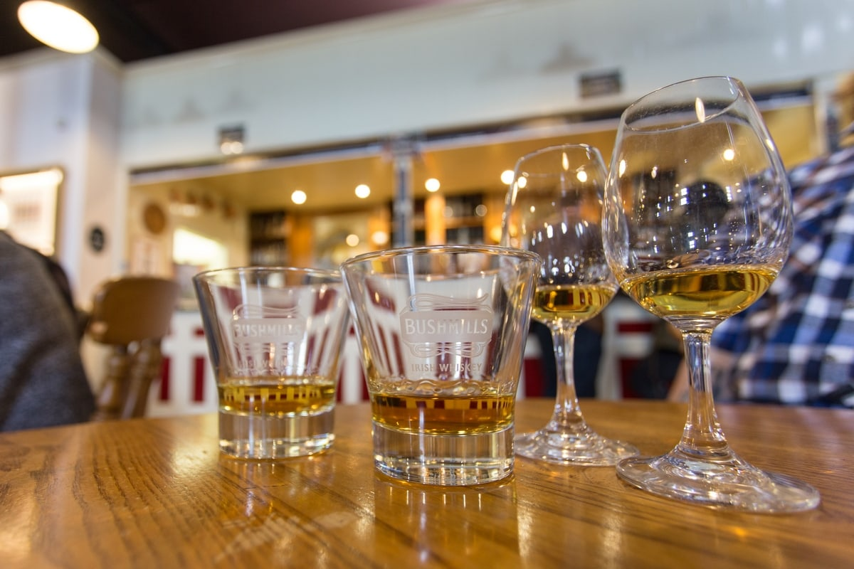 Whiskey tasting class in Ireland: whiskey glasses filled with whiskey samples
