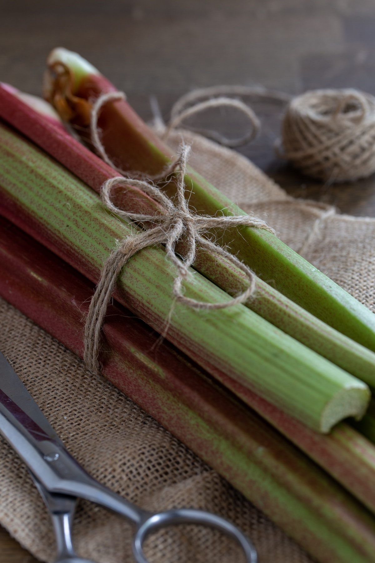 Rhubarb stalks tied with a jute thread.